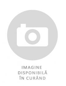 Anvelopa VARA 195/50R13C GRIPMAX CARGO CARRIER 104/101 N