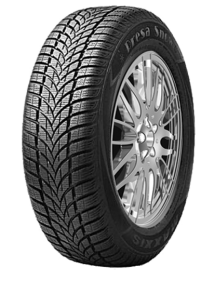 Anvelopa IARNA MAXXIS MA-PW 205/60R15 95 H